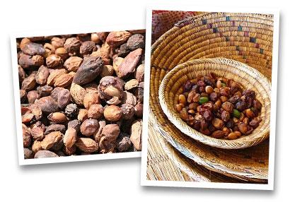 Argan culinaire bio